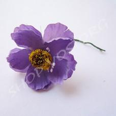 Цветок Мак фиолетовый