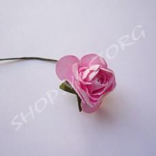Цветок мелкий Роза розовая